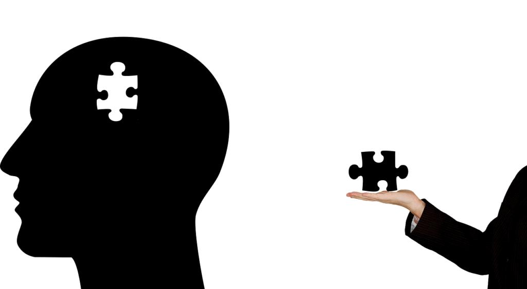 הפרעה נפשית ראשית